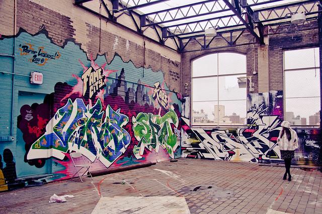 virus_spot_rubin_nyc_2010