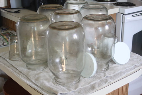 Gallon Jars