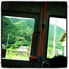 緑濃い山山山。苔むしているみたい。