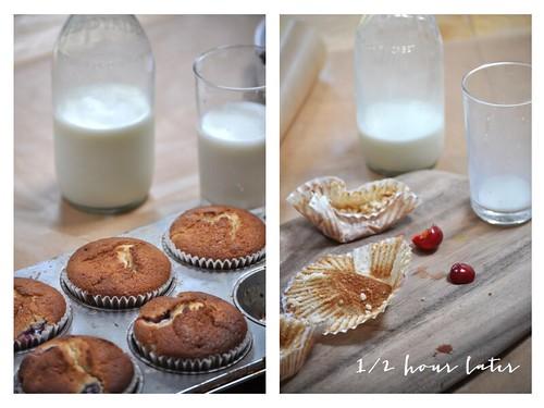 muffins.009