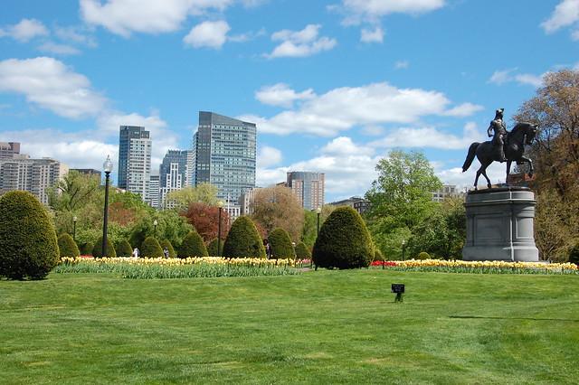 Boston Common in Bloom