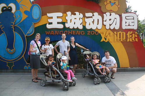 Zoo group