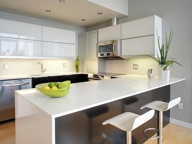 Modern condo kitchen flickr photo sharing for Modern kitchen design for condo