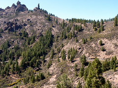 Gran Canaria - Roque Nublo and The Monk in the Spring