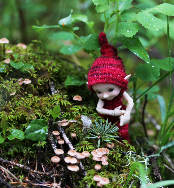 mr tumnus and the fairy mushrooms