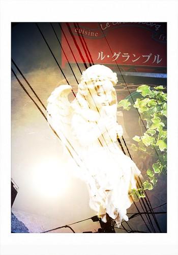 電線の天使 #inpoke