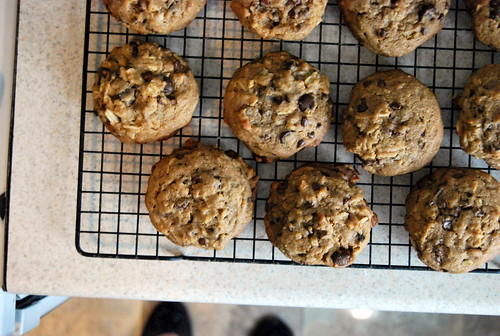 counter - cooling cookies