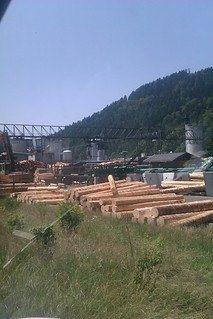 IMblack forest wood processing
