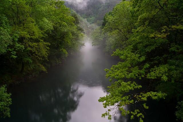Fragas do Eume. Galicia. España.