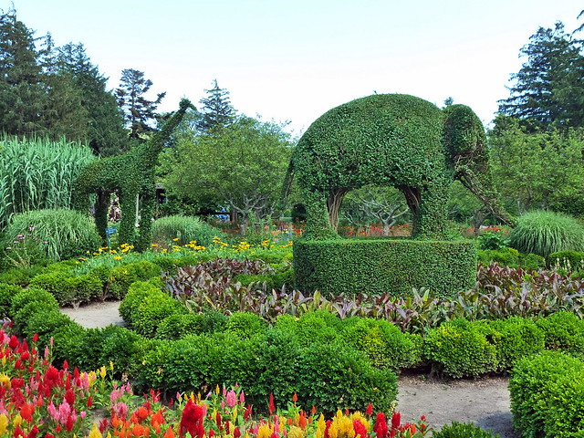 Green Animals Topiary Garden Flickr Photo Sharing