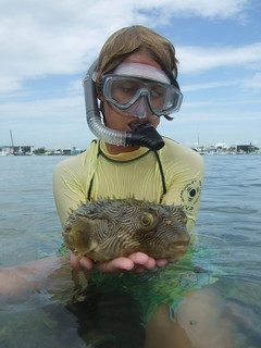 Conner with a striped burrfish!