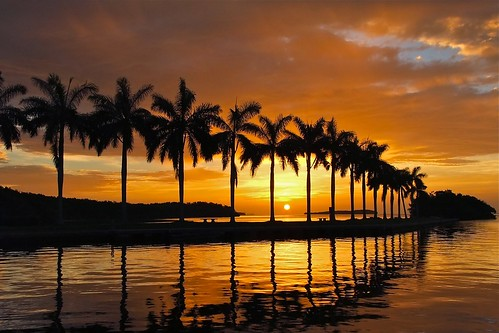 red orange silhouette sunrise reflections palms day florida cloudy miami historic boatbasin biscaynebay deering palmettobay deeringestateatcutler