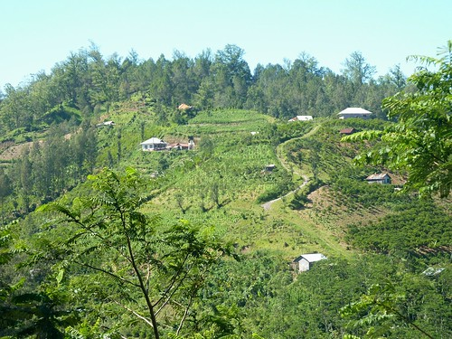 Bali-Batur (23)