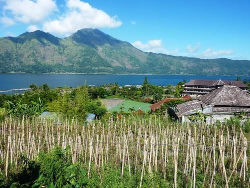 Bali-Batur (85)