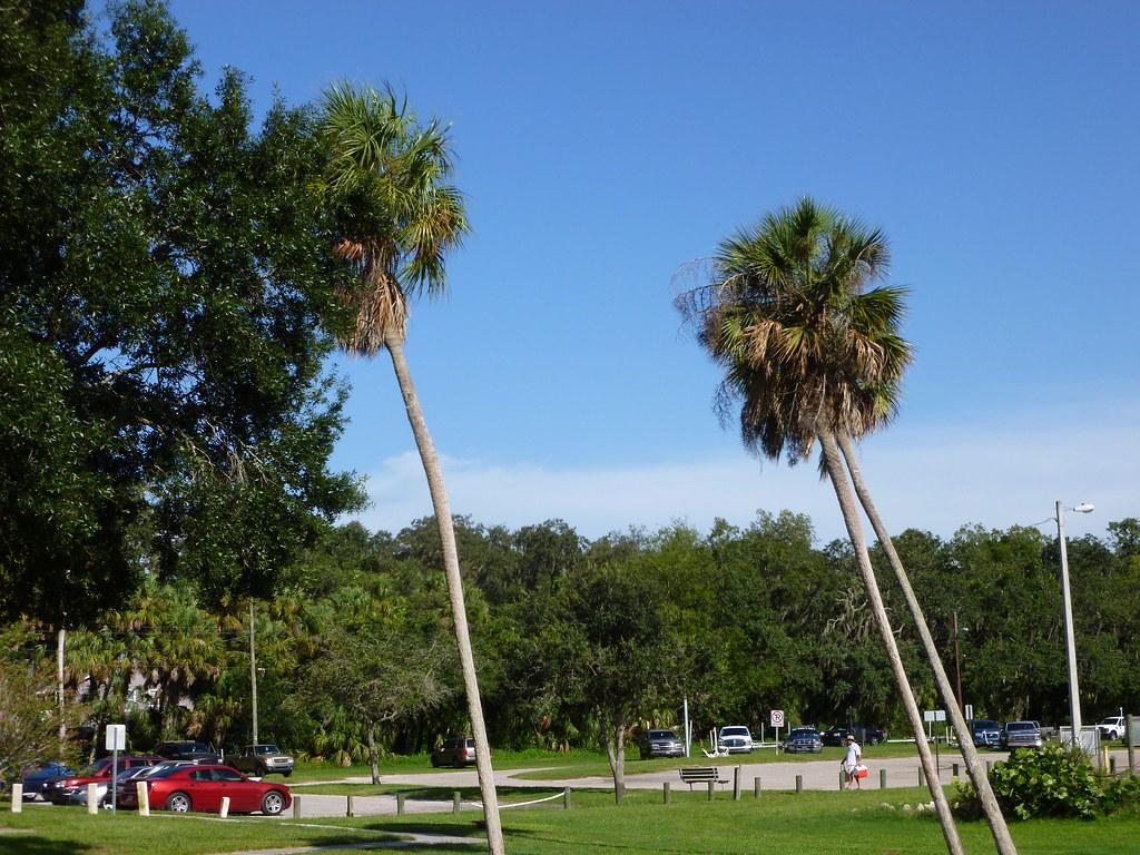 Kingswood Mobile Home Park Riverview Fl