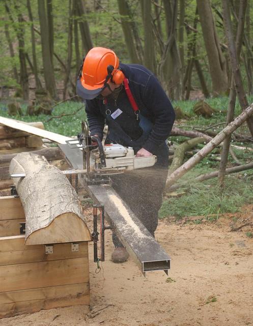 DSC_3925 Logosol sawmill