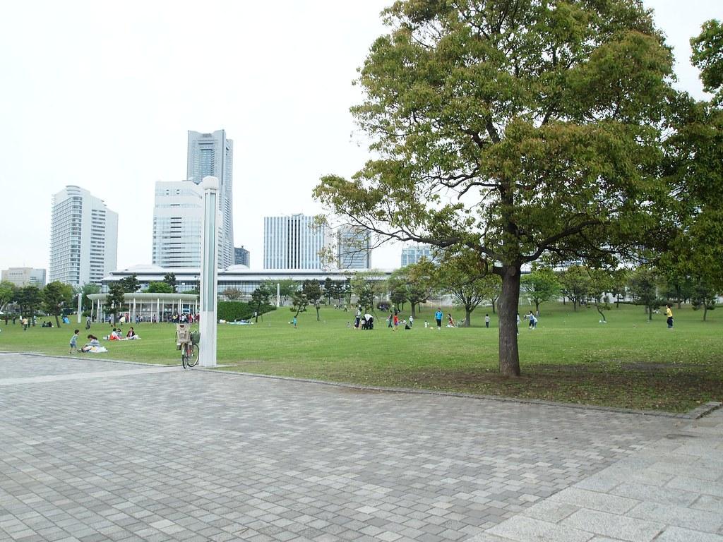 P4304608