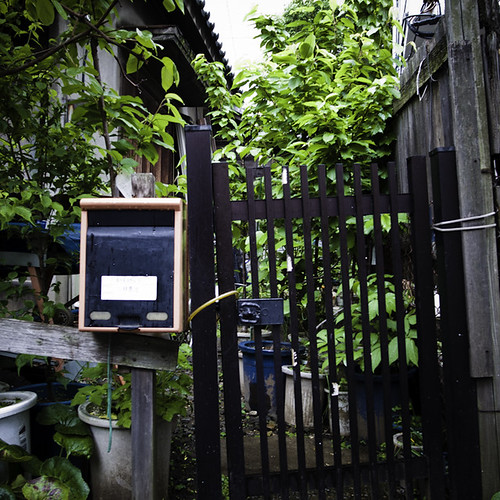 Gated Jungle Home, Harajuku