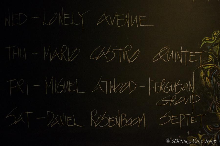 Miguel Atwood-Ferguson Birthday! | Blue Whale