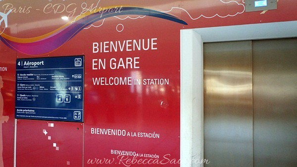Paris - CDG Airport  (42)