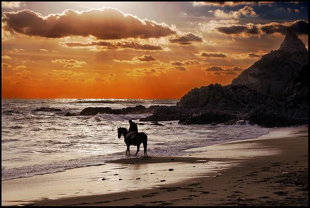 ...Furia...on the beach...