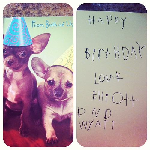 I love my boys. One picked the chihuahua card and the other wrote in it.