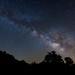 Pine City Milky Way by DanB.