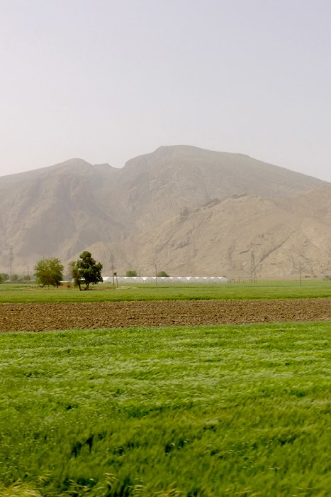 yazd-shiraz-L1030156
