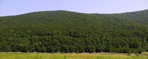 masuleh-tehran-L1040475