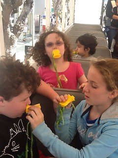 "image: My three kids using yellow ""quacker"" whistles. Leo's sister is helping him with his."