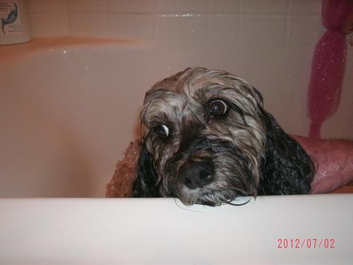 Bathtime 002