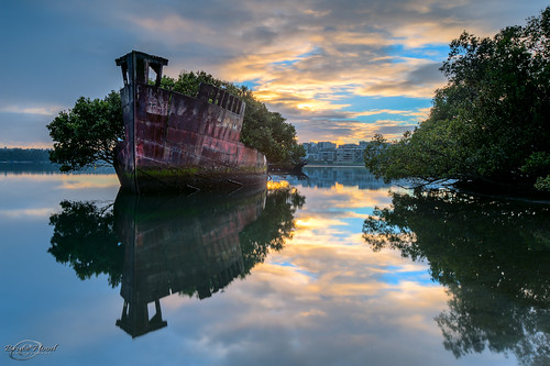 old morning reflection water clouds sunrise ship sydney australia shipwreck nsw newsouthwales wreck homebush wentworthpoint ssayrfield