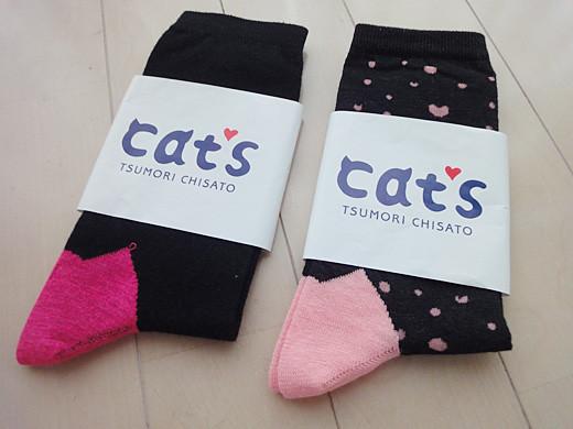 cats_socks_1