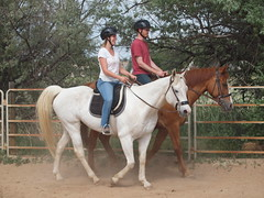 Pair riding. E and Silver, Z and Calliope.