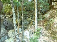 Dans le canyon du Carciara : les restes de l'ancien chemin en RG