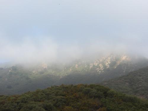 mist burns off