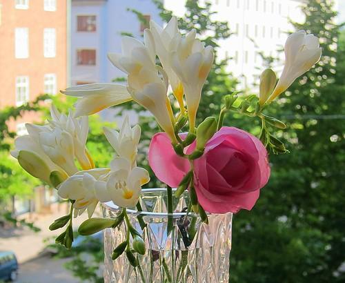 Kukkakimppu by Anna Amnell