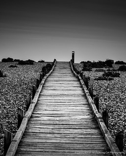 Boardwalk, Dungeness
