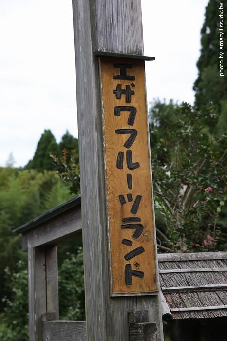 木更津藍莓園