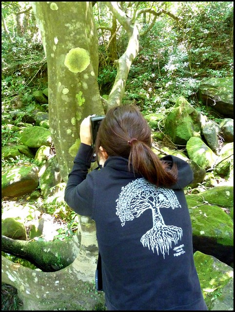 DAUGHTER SHOOTS LICHEN ON TREES
