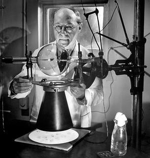 Hermann Joseph Muller: Se a Teoria da Evolução fosse falsa, duvidaria de minha própria existência