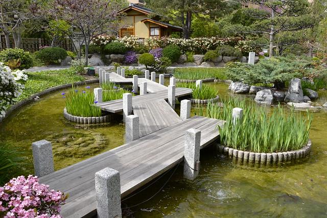 Le jardin japonais de monaco by alexandre pr vot for Alexandre jardin le zubial