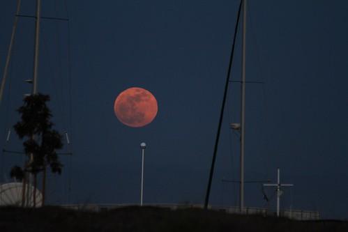 city moon night sailboat marina super luna clear moonrise madness 100views redwood lunatic masts lunar westpoint lunacy moondance 1878 perigee