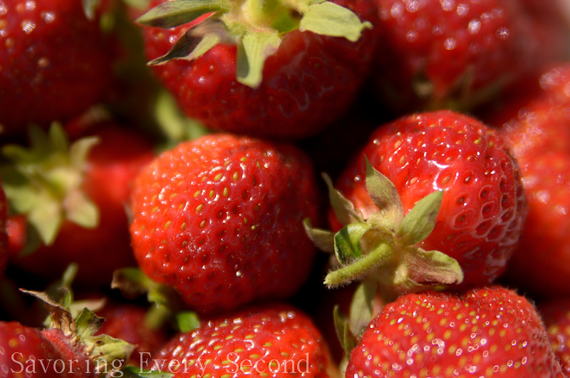 Strawberry Part 2-013.jpg