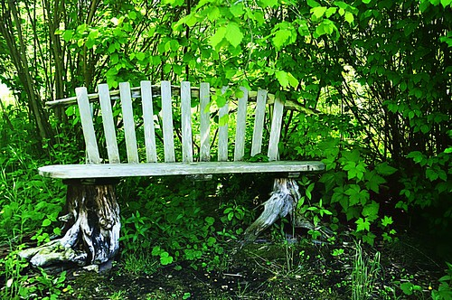 05-25-12 Garden Bench by roswellsgirl