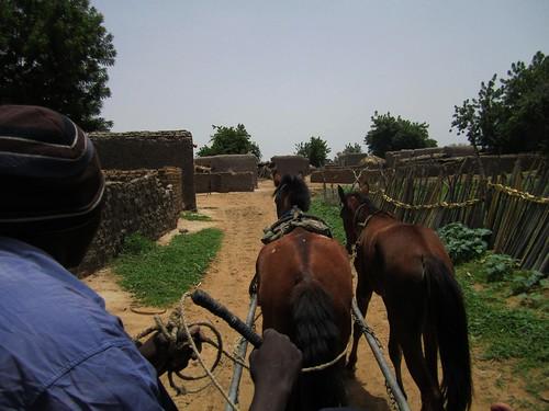 Llegando en carruaje al pueblo de Plea.