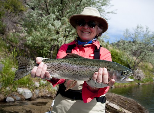 Things looking good for southwestern montana 39 s fishing for Montana fishing season