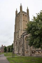 Wells 2011