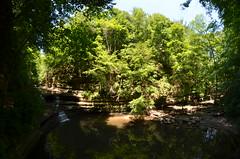 Matthiessen State Park 093