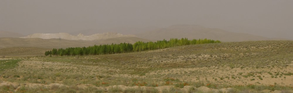 shiraz-tabriz-L1030692
